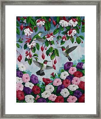 Bird Painting - Hummingbird Heaven Framed Print by Crista Forest