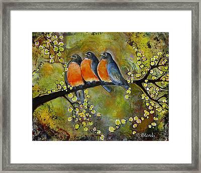 Three Little Robin Birds Framed Print by Blenda Studio