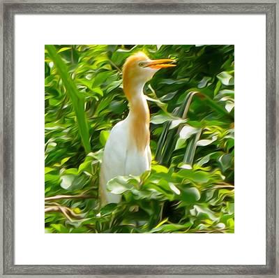 Egret Framed Print by Art Spectrum