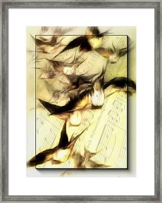 Bird Symphony Framed Print by Gun Legler