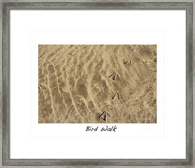 Bird Walk Framed Print by Artist and Photographer Laura Wrede