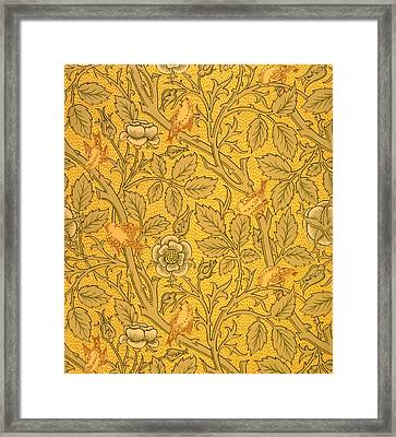 Bird Wallpaper Design Framed Print by William Morris