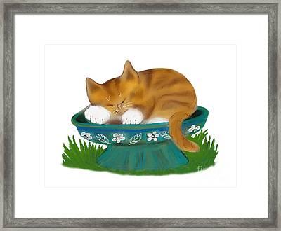 Birdbath Cat Nap Framed Print by Ellen Miffitt