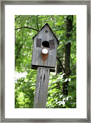 Birdhouse Collection I Framed Print by Suzanne Gaff