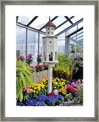 Birdhouse Garden Framed Print by Judy Via-Wolff