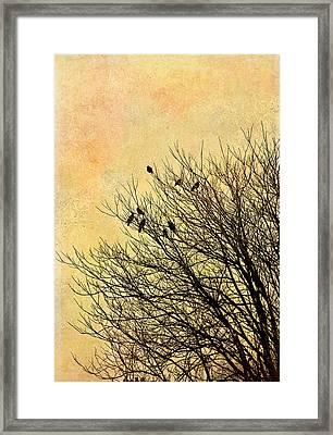 Birds Framed Print by Gynt