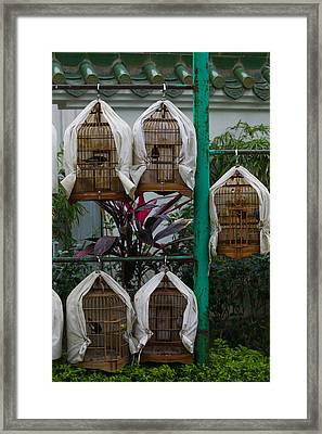 Birds In Cages For Sale At A Bird Framed Print by Panoramic Images