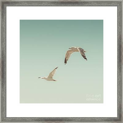 Birds Of A Feather Framed Print by Lucid Mood