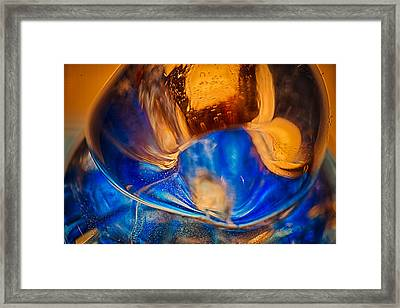 Birds Of A Feather Framed Print by Omaste Witkowski