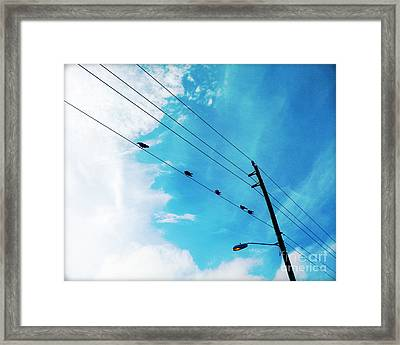 Birds On A Wire IIi Framed Print by Chris Andruskiewicz