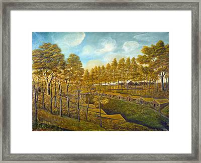 Bishop Hill Colony Framed Print by Granger