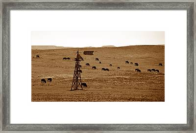 Bison And Windmill Framed Print by David Lee Thompson