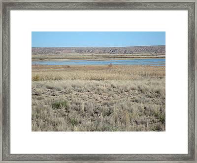 Bitter Lake Framed Print by Susan Woodward