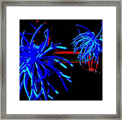 Black And Blues Framed Print by Randall Weidner
