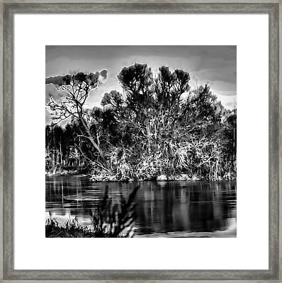 Black And White Artistic Big Tree Colored Coloured #orange By Sun On January 2 2015 Besides The Cree Framed Print by Leif Sohlman