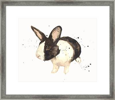 Black And White Bunny Framed Print by Alison Fennell