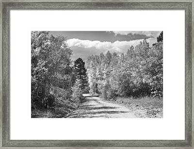 Black And White High Elevation Rocky Mountain 4 Wheeling Dirt Ro Framed Print by James BO  Insogna