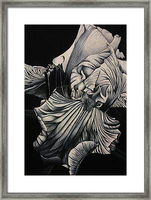 Black And White Iris Study Framed Print by Bruce Bley