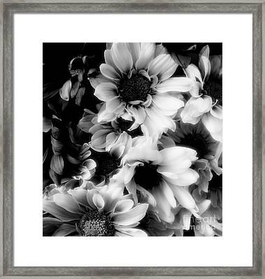 Black And White Framed Print by Kathleen Struckle