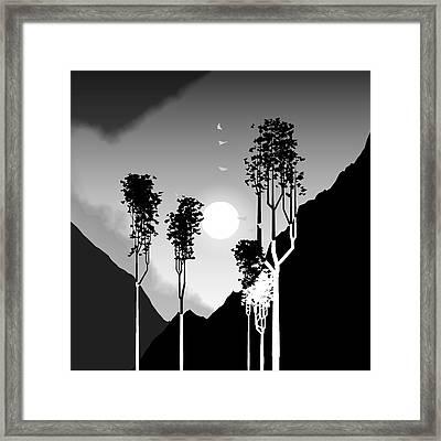 Black And White Trees Framed Print by GuoJun Pan