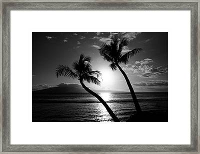 Black And White Tropical Framed Print by Pierre Leclerc Photography