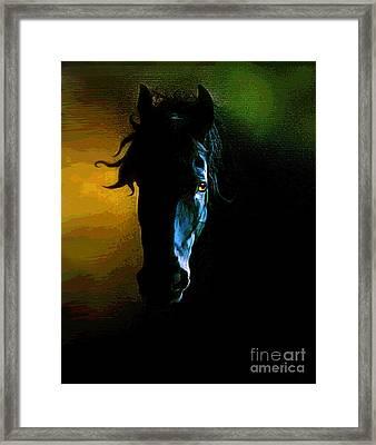 Black Beauty Framed Print by Robert Foster