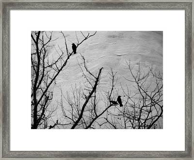 Black Birds Framed Print by Kathy Jennings