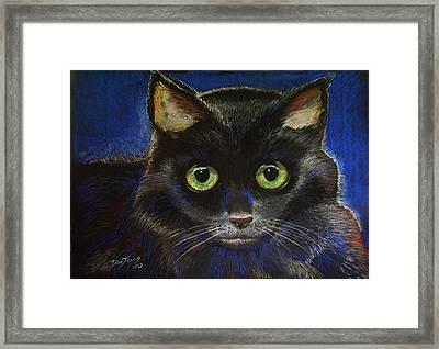 Black Cat Framed Print by Dan Terry