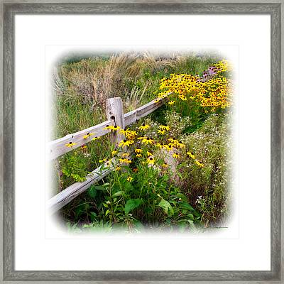 Black Eyed Susan Flowers Near Rustic Garden Fence Framed Print by Julie Magers Soulen