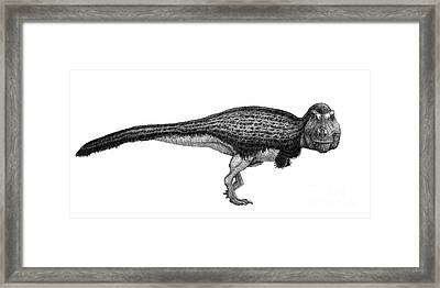 Black Ink Drawing Of Tyrannosaurus Rex Framed Print by Vladimir Nikolov