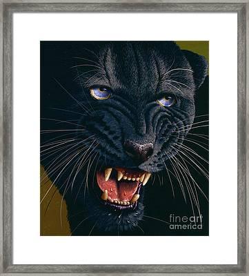 Black Panther 2 Framed Print by Jurek Zamoyski
