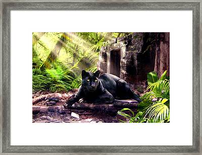 Black Panther Custodian Of Ancient Temple Ruins  Framed Print by Regina Femrite