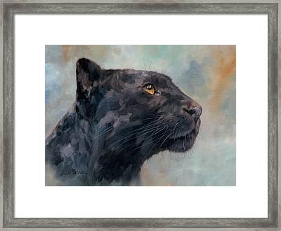 Black Panther Framed Print by David Stribbling