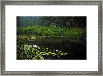 Black Pond Framed Print by Jenny Rainbow