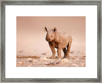 Black Rhinoceros Baby Framed Print by Johan Swanepoel