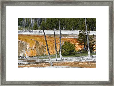 Black Sand Basin Therma Runoff Yellowstone Framed Print by Bruce Gourley