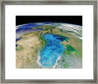 Black Sea Phytoplankton Bloom Framed Print by Nasa/norman Kuring