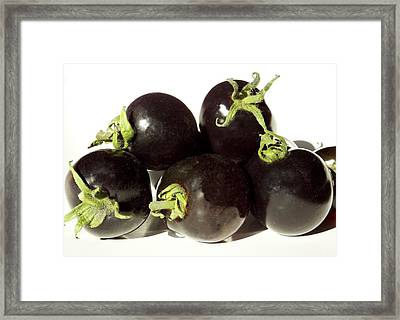 Black Tomatoes (indigo Rose) Framed Print by Ian Gowland