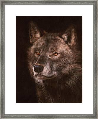 Black Wolf Framed Print by David Stribbling