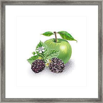 Blackberries And Green Apple Framed Print by Irina Sztukowski