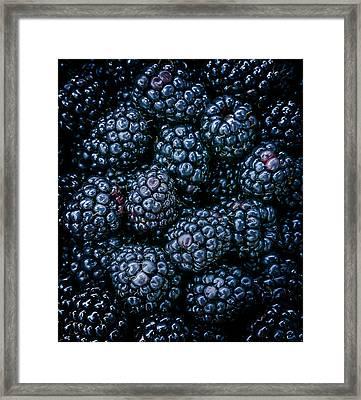Blackberries Framed Print by Karen Wiles