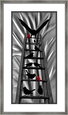 Blackbird Ladder Framed Print by Barbara St Jean