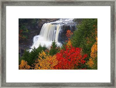 Blackwater Falls In Autumn Framed Print by Jetson Nguyen