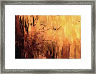 Blanchard Springs Caverns-arkansas Series 01 Framed Print by David Allen Pierson