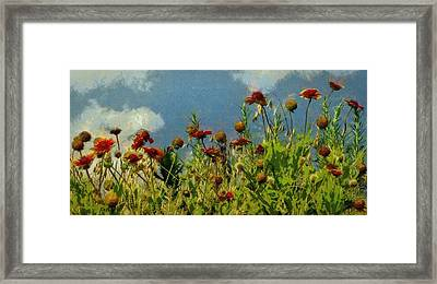 Blanketing The Sky Framed Print by Jeff Kolker