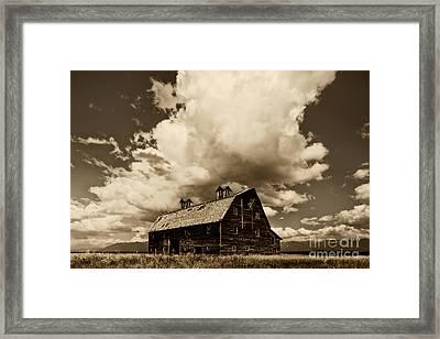 Blasdel Barn Framed Print by Mark Kiver
