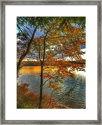 Blaze Framed Print by John Adams