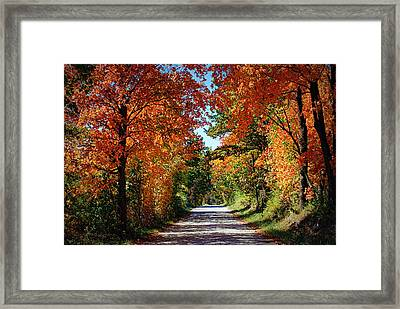 Blaze Of Glory Framed Print by Cricket Hackmann