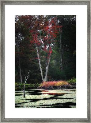 Blazing Beaver Hut Framed Print by Bill Wakeley
