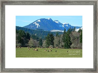 Blessed In The Valley Framed Print by Chalet Roome-Rigdon